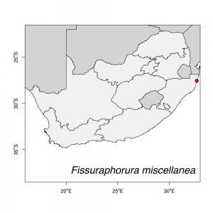 Fissuraphorura miscellanea Map