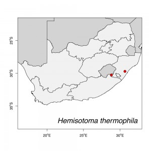Hemisotoma thermophila Map