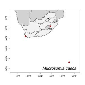 Mucrosomia caeca Map