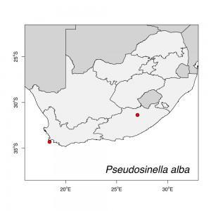 Pseudosinella alba Map