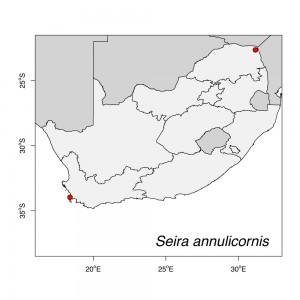 Seira annulicornis Map