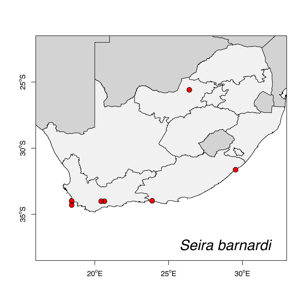 Seira_barnardi