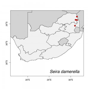 Seira damerella Map