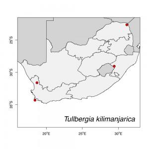 Tullbergia kilimanjarica Map